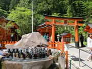 Hakone Shrine's Garden